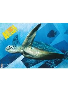 Подложка настольная 60х40 Animal Planet KITE AP15-212K
