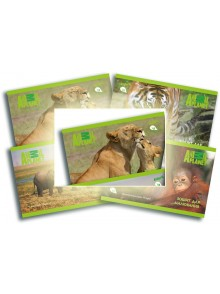 Альбом для рисования 12 листов Animal Planet KITE AP16-241-1