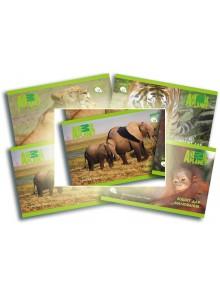 Альбом для рисования 12 листов Animal Planet KITE AP16-241-3