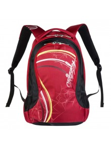 Рюкзак молодежный GRIZZLY GR328-1