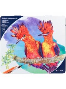 Карандаши цветные акварельные, 24 цвета KITE K18-1053